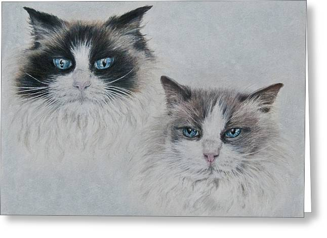 Blue Eyed Cats Greeting Card by Marla Saville