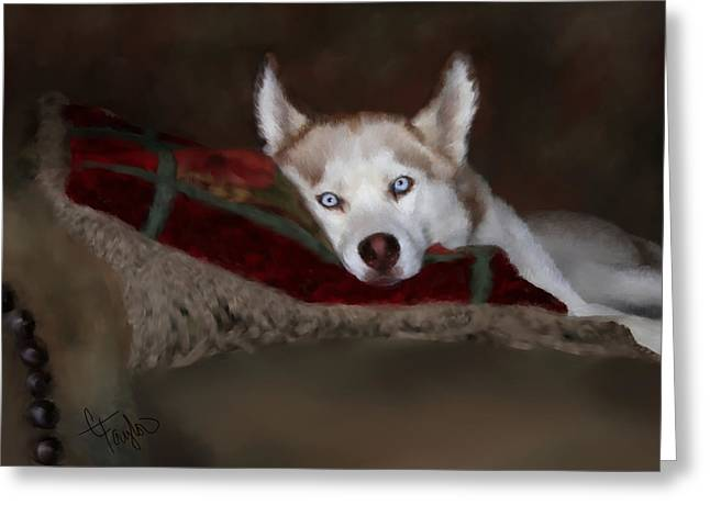 Rescue Mixed Media Greeting Cards - Blue Eyes Greeting Card by Colleen Taylor