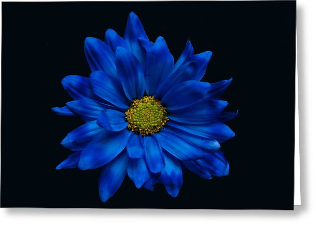Blue Flower Greeting Card by Ron Smith