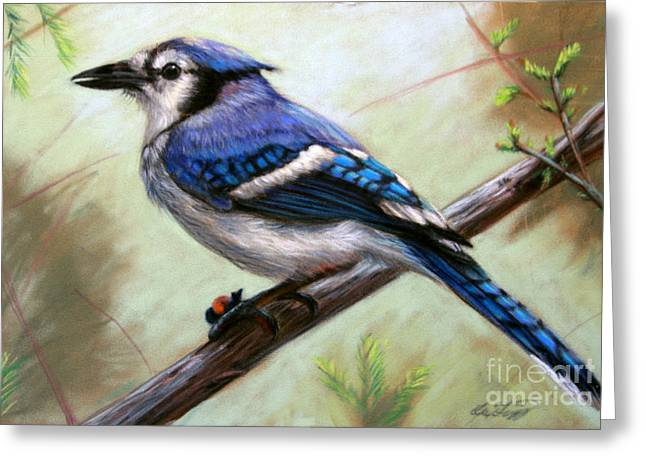 Blue Pastels Greeting Cards - Blue Jay Greeting Card by Deb LaFogg-Docherty