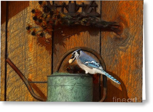 Blue Green Water Mixed Media Greeting Cards - Blue Jay On Watering Can Greeting Card by Marjorie Imbeau