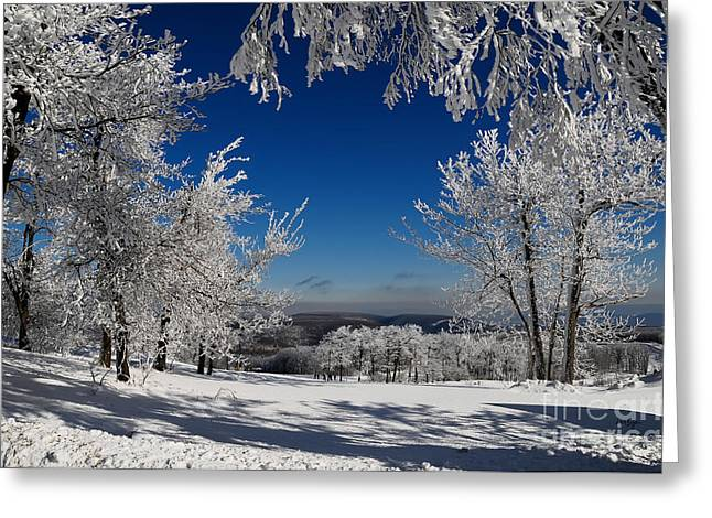 Pa Greeting Cards - Blue Knob Greeting Card by Lois Bryan