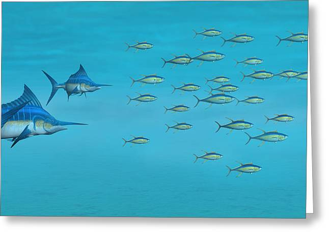 Blue Marlin.white Marlin Greeting Cards - Blue Marlin and Yellowfin Tuna Greeting Card by Walter Colvin