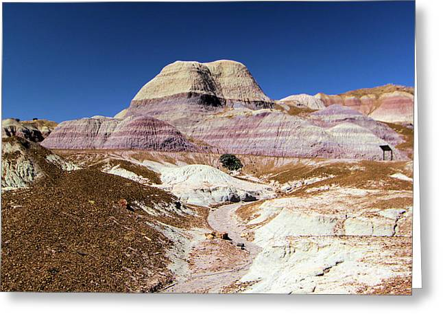 Petrified Forest National Park Greeting Cards - Blue Mesa Tower Greeting Card by Adam Jewell