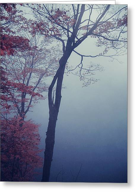 Aimelle Prints Greeting Cards - Blue Mist Greeting Card by Aimelle