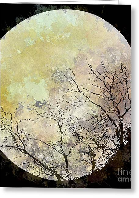 Blue Moon Rising Greeting Card by Arne Hansen
