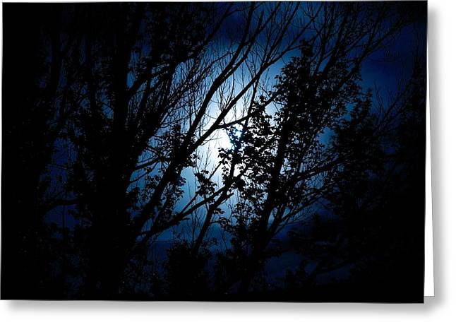 Blue Night Greeting Card by Kevin Bone