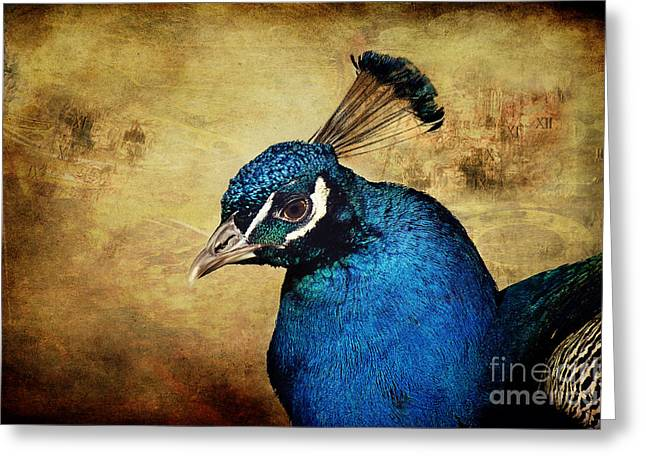 Blue Bird Greeting Cards - Blue Peacock Greeting Card by Angela Doelling AD DESIGN Photo and PhotoArt