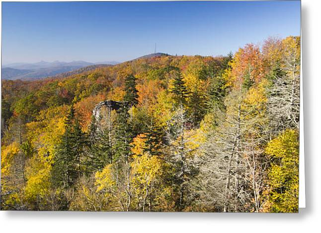 Trees In Autumn Greeting Cards - Blue Ridge Parkway in Autumn Greeting Card by Dustin K Ryan
