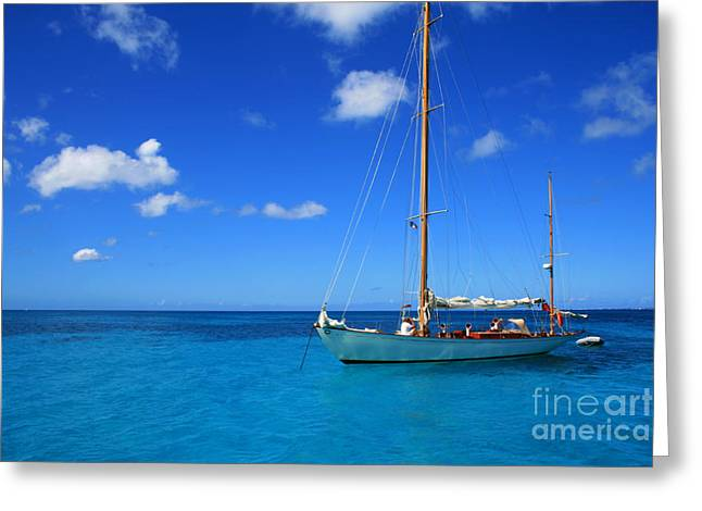 Sailboat Ocean Greeting Cards - Blue Sailing Greeting Card by Perry Webster