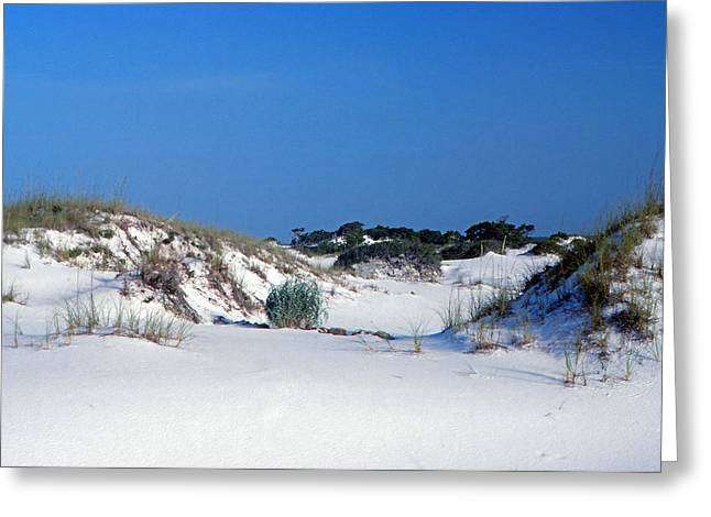 """""""sand Dunes Greetings Card"""" Greeting Cards - Blue Sky and Sand Greeting Card by Bob Whitt"""