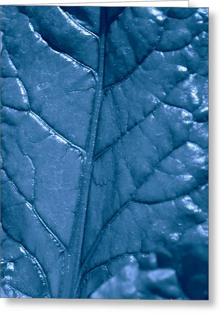 Blue Songs Greeting Card by Diane montana Jansson