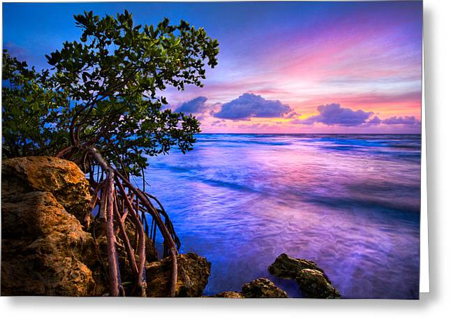 Colorful Sunset Greeting Cards Greeting Cards - Blue Tide Greeting Card by Debra and Dave Vanderlaan