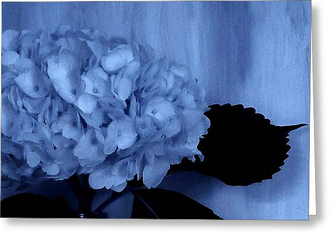 Floral Photos Greeting Cards - Blue Tint Hydrangea Greeting Card by Marsha Heiken
