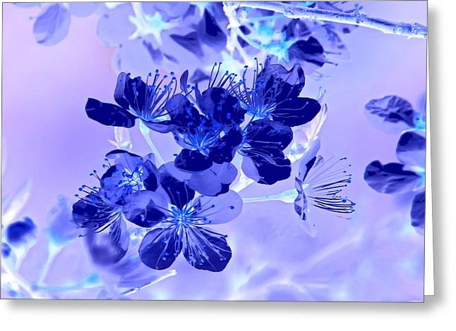 Inverted Color Greeting Cards - Blue Wallpaper Greeting Card by Vickie Emms