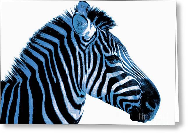 Blue zebra art Greeting Card by Rebecca Margraf