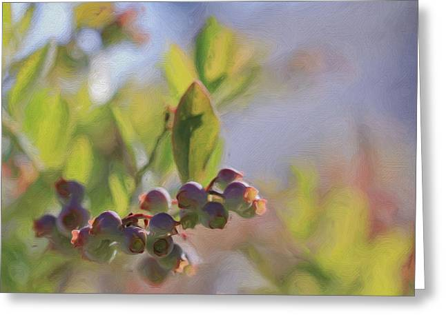 Abstract Blueberries Greeting Cards - Blueberries And Sunlight Greeting Card by Heidi Smith