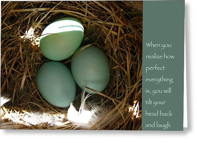 Baby Bird Greeting Cards - Bluebird Eggs with Buddha Quote Greeting Card by Heidi Hermes