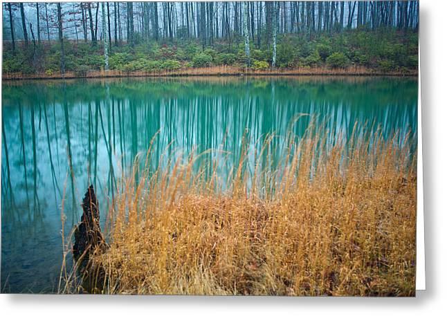 Bluegreen Greeting Cards - Bluegreen Lagoon 1 Greeting Card by Douglas Barnett