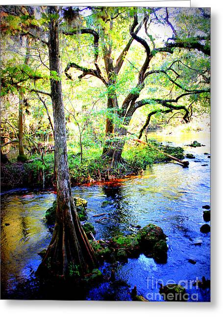 Swampland Greeting Cards - Blues in Florida Swamp Greeting Card by Carol Groenen