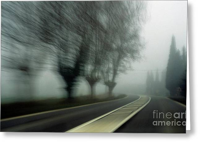 Bare Trees Greeting Cards - Blurry bare trees visible through the fog Greeting Card by Sami Sarkis