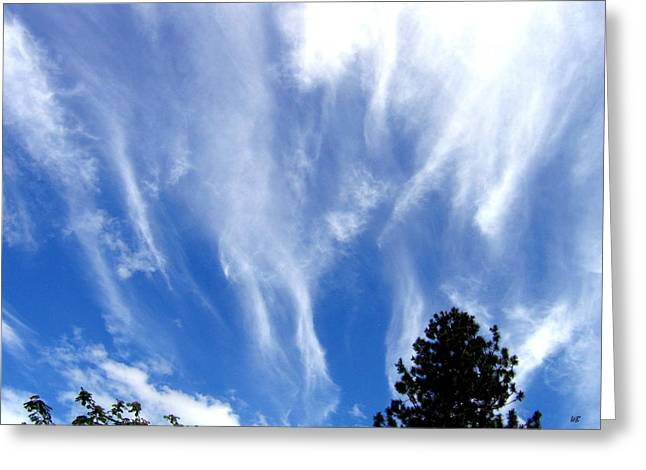 Blustery Greeting Cards - Blustery Sky Greeting Card by Will Borden