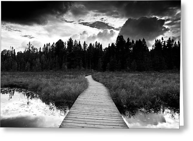 Bog Greeting Cards - Boardwalk Greeting Card by Cale Best