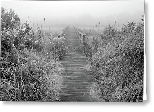 Wildlife Preserve Greeting Cards - Boardwalk in Quogue Wildlife Preserve Greeting Card by Rick Berk