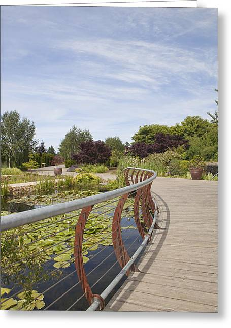 Pond In Park Greeting Cards - Boardwalk Over Water Gardens At Oregon Greeting Card by Douglas Orton