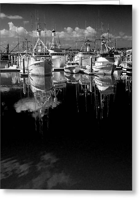 Pacific Ocean Prints Greeting Cards - Boat Fleet in San Diego Harbor Greeting Card by Randall Nyhof