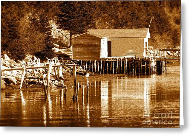 Shed Digital Art Greeting Cards - Boat House Greeting Card by Barbara Griffin