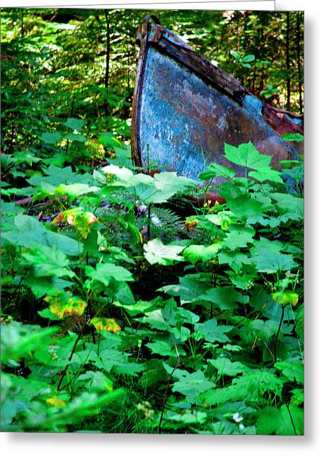 Row Boat Greeting Cards - Boat in the Landscape Greeting Card by David Patterson