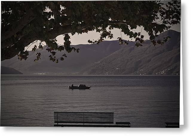 Plane Trees Greeting Cards - boat on the Lago Maggiore Greeting Card by Joana Kruse