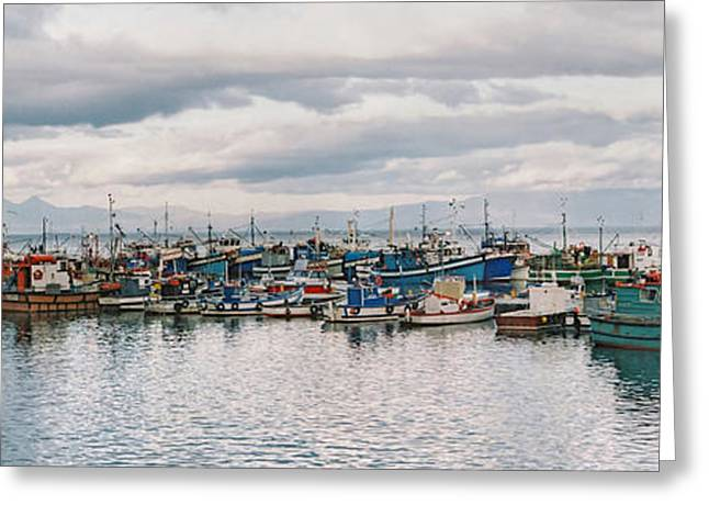 Famous Fish Abstract Greeting Cards - Boats Galore Greeting Card by Andrew  Hewett