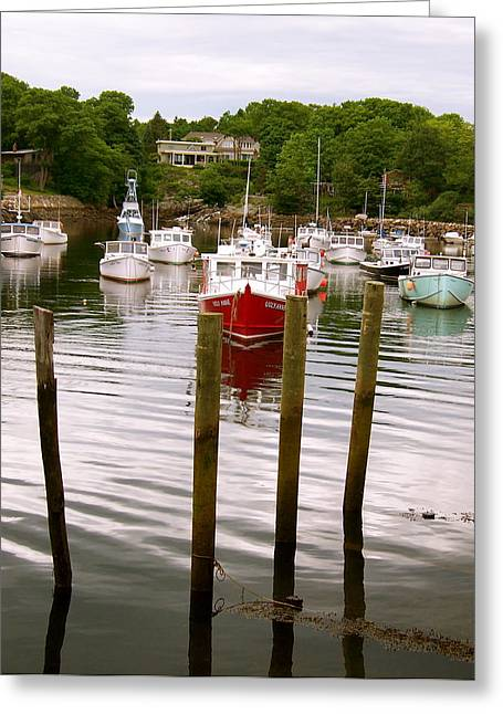 Ocean Vista Greeting Cards - Boats in the Harbor Greeting Card by Robin EL-Hachem
