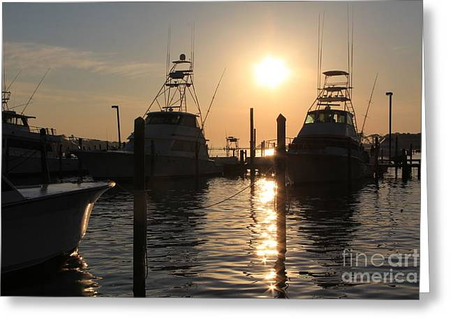Fishing Tournaments Greeting Cards - Boats in the Marina Greeting Card by Allison  Adams