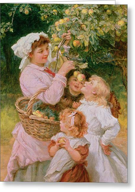 Mom Paintings Greeting Cards - Bob Apple Greeting Card by Frederick Morgan