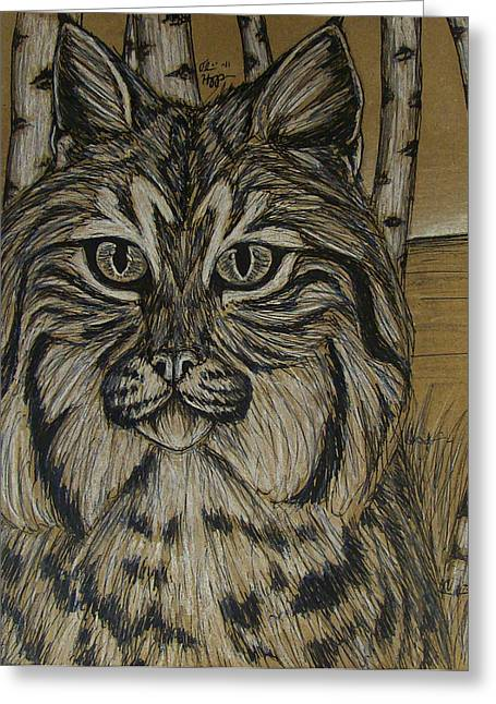 Bobcat Mixed Media Greeting Cards - Bobcat and Birch 2  Greeting Card by Olivia Hoppe