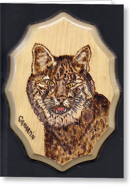 Bobcats Pyrography Greeting Cards - Bobcat Greeting Card by Clarence Butch Martin