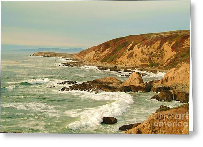 California Ocean Greeting Cards - Bodega Bay coastline  one Greeting Card by Alberta Brown Buller