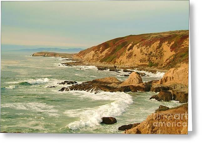 Bodega Bay coastline  one Greeting Card by Alberta Brown Buller