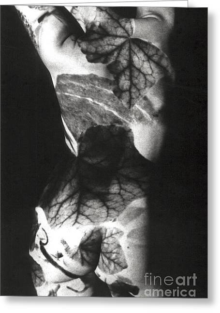 Monochrome Pyrography Greeting Cards - Body Projection Woman - Duplex Greeting Card by Silva Wischeropp