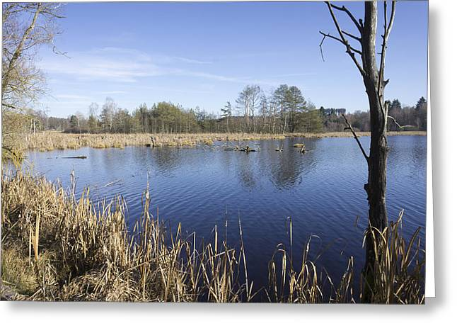 Floodplain Greeting Cards - Bog landscape Schwenninger Moos Greeting Card by Matthias Hauser