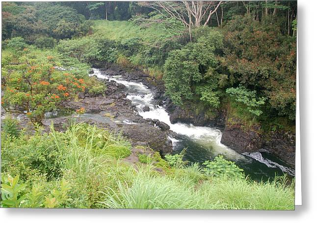 Fall Photographs Pyrography Greeting Cards - Boiling Pot Falls Hawaii Greeting Card by Wayne Sheeler