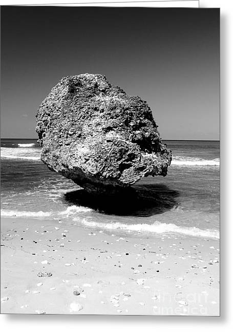 Greater Antilles Greeting Cards - Bolder on Barbados Beach Greeting Card by Darcy Michaelchuk