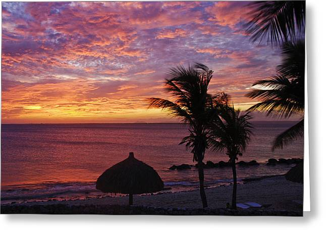 Tropical Island Greeting Cards - Bonaire Sunset 1 Greeting Card by Stephen Anderson