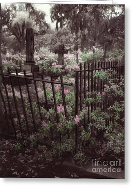 Savannah Infrared Photography Greeting Cards - Bonaventure Cemetary Greeting Card by Julie Hart
