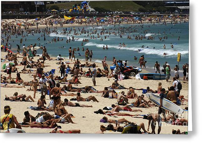 Sunbathing Greeting Cards - Bondi Beach Is Never Crowded Mate Greeting Card by Bob Christopher