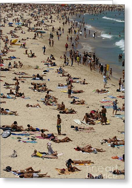 Surfing Photos Greeting Cards - Bondi Beach Never Crowded Greeting Card by Bob Christopher