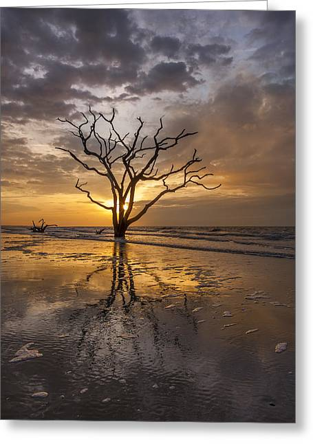 Boneyard Sunrise Greeting Card by Joseph Rossbach